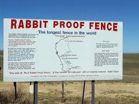 Longest Fence in the World? The stories from the Rabbit